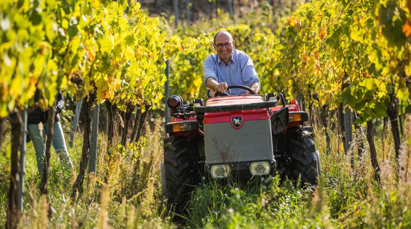 Ferdinand Mayr Wine
