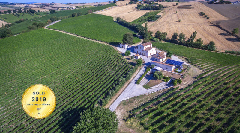 Tenute Pieralisi : A passion for innovation in winemaking