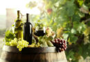 GLOBAL ORGANIC WINE CONSUMPTION TO HIT ONE BILLION BOTTLES BY 2023