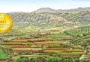 Tenuta Lonetti : A Lifelong Passion for Winemaking