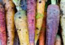 NutriLeads scores €6.5m to launch immune-enhancing carrot ingredient