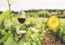 Scea Chateau Haut Pougnan : Classic and Fine Wines from Bordeaux