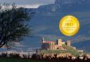 San Vicente (Señorío de San Vicente winery) : Origin of Great Wines