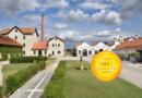 DFJ Vinhos, S.A. : Highest Quality Portuguese Wines, The New Portugal